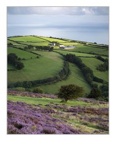 This is the view Hugh wants to show Olivia and the girls when he tours them around the estate Porlock Hill, Somerset Somerset England, England And Scotland, British Countryside, Country Landscaping, British Isles, Great Britain, Travel Pictures, Places To See, Beautiful Places