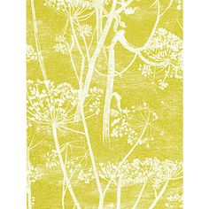 Cole & Son Cowparsley Wallpaper Online at johnlewis.com