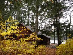 Cabin in the Porcupine Mountains Wilderness State Park