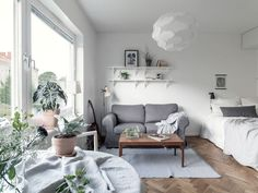 Studio apartment with smart layout