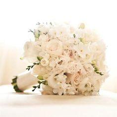 papini flowers