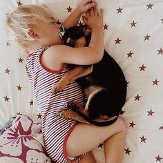 Theo et Beau ou l'histoire d'une amitié de sieste !