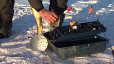 Ice fishing for trophy Walleye, Bay of Quinte, ON
