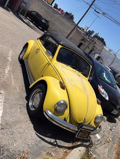 SoCal Air-Cooled scene. Santa Monica, Los Angeles, U.S.A.     Picture by Steven Le, from Los Angeles, California.