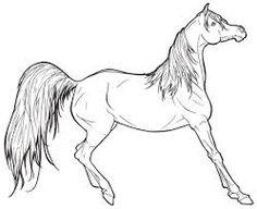 Imagini pentru desene cu cai