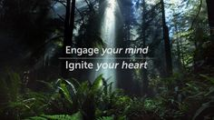 1440 Multiversity: Engage your mind, Ignite your heart
