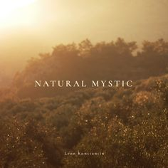 Deep guitar music :) Inspired by nature and her mystic. Epic light in this picture. Harmony Guitars, Awakening, Mystic, Album, Inspired, Card Book