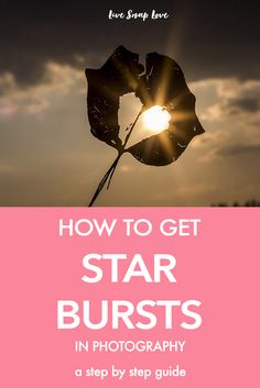 A step by step guide on how to get starbursts in your images (and it's easier than you think) in this beginners photography tutorial. Click through to read how to do it!