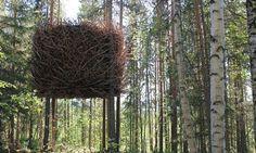 Bird's Nest Treehotel in Harads, Sweden.