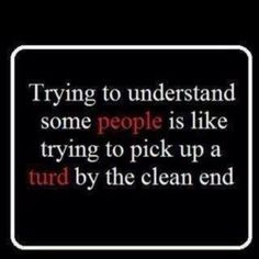 trying to understand some people is like trying to pick up a turd by the clean end