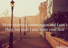 Misty morning comes again and I can't help but wish I could see your face.