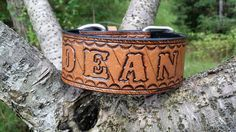 The Dean- Personalized Heavy Duty Leather Dog Collars - Artist Choice