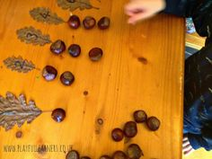 "Autumn number recognition - numbered leaves with conkers to count - from Playful Learners ("",) Maths Eyfs, Numeracy Activities, Number Activities, Early Years Maths, Early Math, Early Learning, Forest School Activities, Autumn Activities, Reggio Emilia"