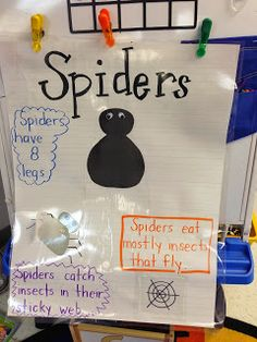 Teaching with Tera: The Very Busy Spider...and Preschoolers!
