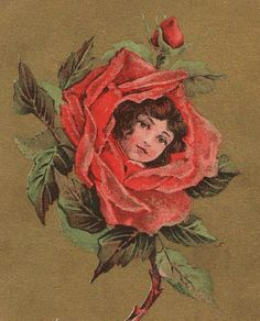 Beautiful Vintage Birthday Greetings Postcard by VintagenutsInc