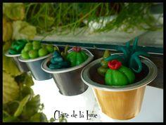 Succulentes fimo nespresso 2