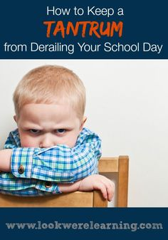 Homeschool moms are both parents and teachers. How can you deal with a homeschool tantrum without disrupting your entire school day? Try these tips from www.lookwerelearning.com