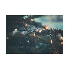 fair isle Tumblr ❤ liked on Polyvore featuring pictures, winter and backgrounds