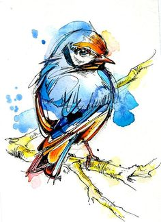 European goldfinch on tree branch machine embroidery design from Birds collection. Looks adorable on small cosmetic bag. Pen And Watercolor, Watercolor Animals, Watercolor Paintings, Watercolors, Ink Paintings, Bird Drawings, Outline Drawings, Bird Art, Zentangle