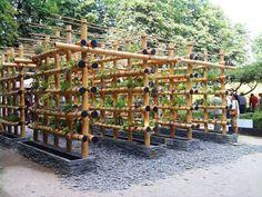 Urban Garden Design The Babylon Urban Garden Made Out of Bamboo Flowers, Plants Vertical Farming, Vertical Gardens, Aquaponics Diy, Hydroponic Gardening, Bamboo Structure, Bamboo Architecture, Architecture Design, Bamboo House, Bamboo Design