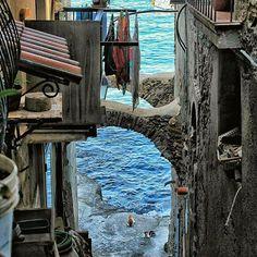 @goldilocksr93 Chianalea Scilla via Grotte... il mare tra le case