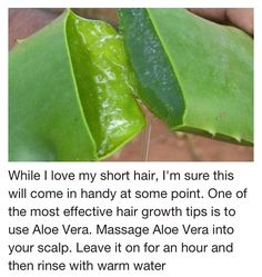 Hair growth recipe