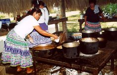 Cooking - Today's Seminole Indian enjoys the same foods, shops at the same grocery stores and calls out for pizza delivery as much as anyone living outside Seminole Country. With the exception of sofk (a Seminole drink made of grits or roasted corn) and fry bread, most traditional cooking is done on special occasions.  In the past, however, Seminoles made flour for cooking from the roots of the wild coontie (Zamia) plant. The Seminole Tribe of Florida.