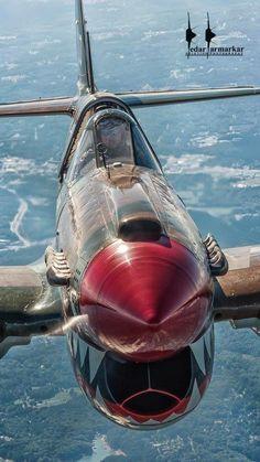 "P-40 ""FLYING TIGER"""