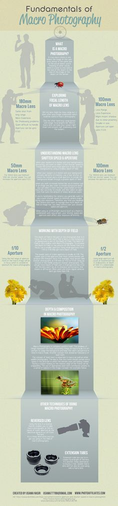 Fundamentals of Macro Photography #infografia #infographic