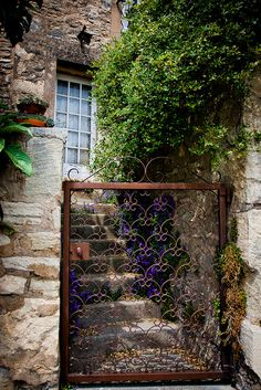Wrought Iron Gate in France