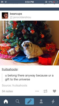 The greatest present of all. | 23 Of The Cutest Things That Have Ever Happened On Tumblr