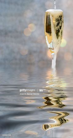Glass Of Champagne, White Wine, Reflection, Alcoholic Drinks, Stock Photos, Tableware, Water, Quotes, Outdoor