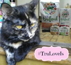 Melissa's Mochas, Mysteries and Meows: #TruLoveIs Living Nutrition from Wellness TruFood #ad