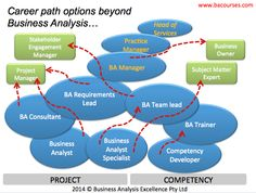 Business Analysis Career Progression Options - this picture illustrates alternative career path options for Business Analysts who are wondering on what's next for them to do on the corporate career ladder!