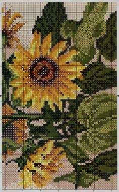 słoneczniki 3