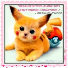 #teamHOLLYWOOD <3's #KITTENS & #POKEMON! ';)