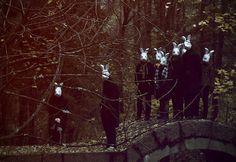 the clan of the bridge bunnies