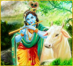 """✨ SHRI KRISHNA GOVINDA ॐ ✨ http://careforcows.org/    """"O Supreme Personality of Godhead, greatest of all, who lives in everyone's heart and in whom everyone lives, O witness of everything, O Vasudeva, supreme and all-pervading person, I offer my respectful obeisances unto You.""""~Srimad Bhagavatam 8.16.29"""