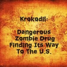 Image result for what is krokodil