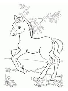Printable Horse Coloring Page. Printable Horse Coloring Page. Coloring Pages Free Printable Horse Coloring for Kids Book Frozen Coloring Pages, Fall Coloring Pages, Horse Coloring Pages, Unicorn Coloring Pages, Christmas Coloring Pages, Printable Coloring Pages, Adult Coloring Pages, Coloring Pages For Kids, Coloring Books