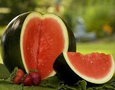 Sugar Baby is the ideal watermelon for the home gardener that wants big taste with limited space