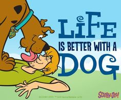 cartoons scooby doo LIKE this post if you have a canine companion that brightens up your day. Cartoon Tv Shows, Cartoon Dog, Cartoon Characters, Scooby Doo Images, Scooby Doo Pictures, Trollhunters Steve, Scooby Doo Mystery Incorporated, Shaggy And Scooby, New Scooby Doo