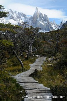 Trekking Outside El Chalten, Argentina International travel insurance that includes active and adventure sports like trekking free of charge - check out http://www.clicktravelcover.com/