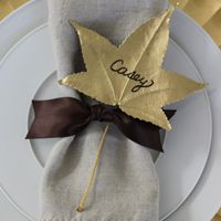 Place cards, napkin rings an thanksgiving decor