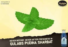 #FRESHNESS in every sip with #Gulabs #PudinaSharbat.
