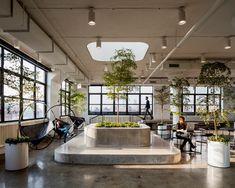 Новый офис Squarespace в Нью-Йорке