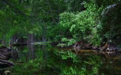Boerne - Cibolo - trails - Texas - parks - nature - photography - creeks - water - outdoors