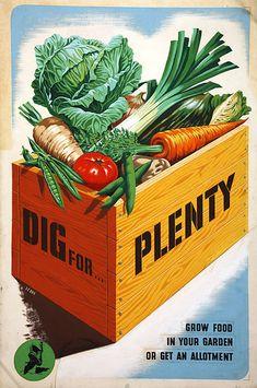 dig-for-plenty-2