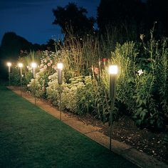 I like the height of these lights. Lighting is so important if you want to enjoy outdoor living at night.