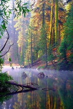 Amazing Lakes- California - Misty Huntington Lake- California